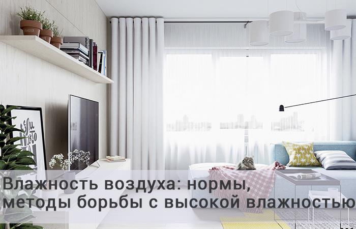 Грибок на стенах в квартире и как от него избавиться, чем убрать плесень со стен в квартире, как вывести в домашних условиях